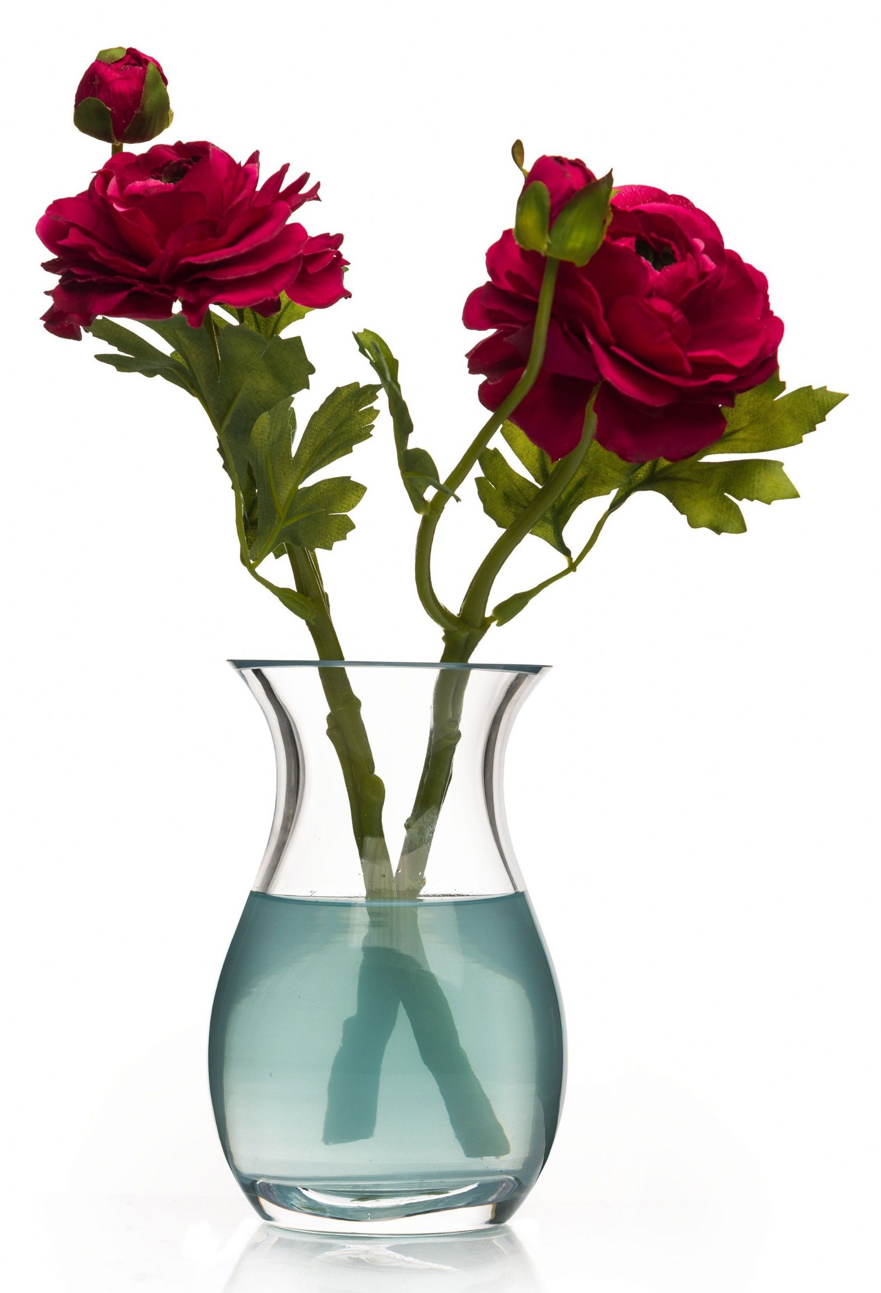 sc 1 st  Solavia Fine Glassware : tall flowers for vases - startupinsights.org